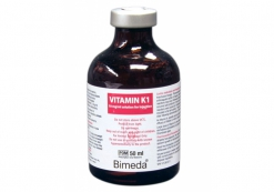 VITAMIN K1 INJECTION