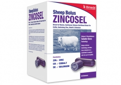 ZINCOSEL SHEEP